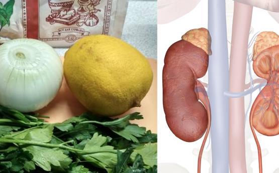 Սոխ, կիտրոն և մաղադանոս․ Այս 3 բաղադրիչները կօգնեն ձեզ մաքրել և ֆիլտրել երիկամները մանրէներից, թունավոր նյութերից և տոքսիններից