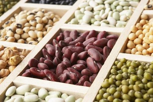 Фасоль — диетический и лечебный продукт