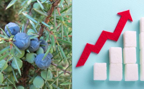 Շաքարային դիաբետը բուժել հնարավոր է այս բնական միջոցի օգնությամբ