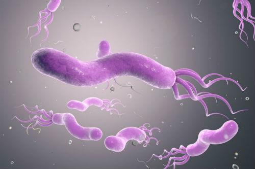 Парадоксы геликобактера: понимание и лечение болезни
